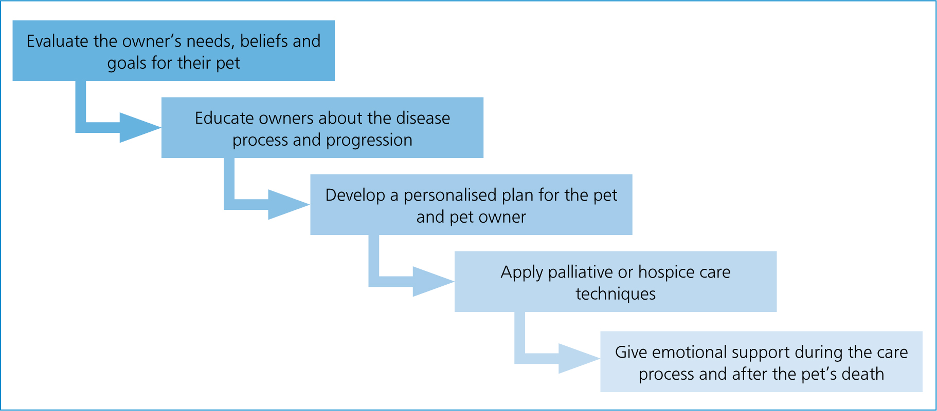 Supporting Quality Of Life In Feline Patients With Chronic Kidney Disease The Veterinary Nurse